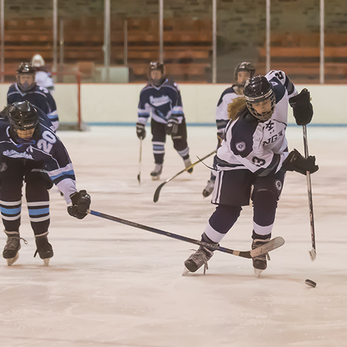 Big Blue Beat: Girls' Varsity Ice Hockey Team
