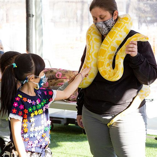Snakes 'n Scales Visit the Lower School