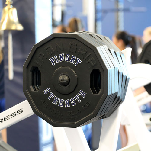 Pingry Strength plates